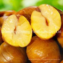 Prix concurrentiel New Crop Fresh Chestnut