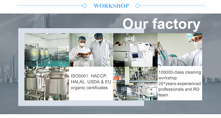 Plant Extract Factory