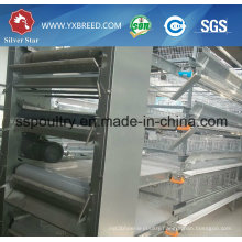 Chicken Bird Trap Cage/Types of Laying Hens/Chicken Cage
