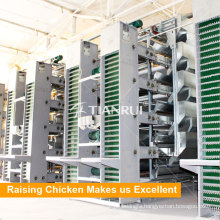 Tianrui Hot Selling Automatic Chicken Egg Collecting System