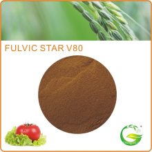 Fulvate Fertilizer in Agricultural