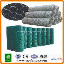 ISO9001: 2008 Approvisionnement réel d'usine Galvanisé pas cher hexagonal treillis métallique