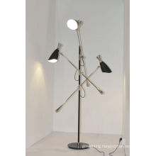 Modern Elegant Indoor Decorative Floor Light (1147F)