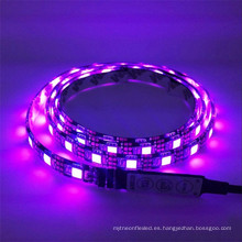 IP20 IP65 12V 24V 300Leds rgbw 5050 iluminación llevada flexible de la tira