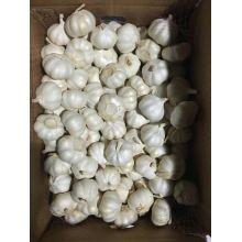 Grade A Pure White Ail de Chine en vente