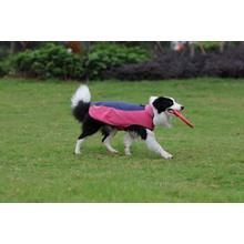 Dog Clothes Pet Product