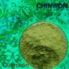 20. Sophora Japonica Extrakt Bioflavonoide Quercetin 95% HPLC