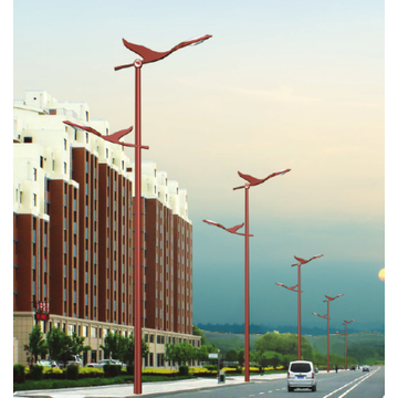 Asymmetrical LED Street Lamp