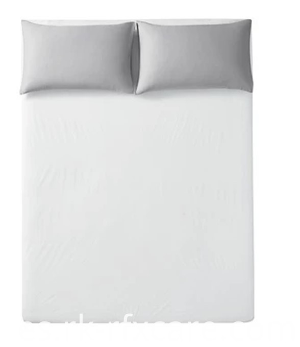 Clean Disposable Sheet