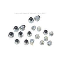 Tuerca de casquillo de nylon del acero inoxidable del acero de carbón (CZ005)