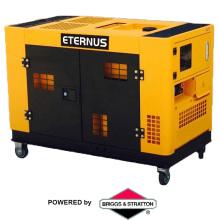Cost Effective Chinese Engine Diesel Generator Set 10kw (BM12T)
