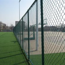 Anti-arm sport ground chain link wire mesh fence