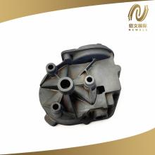 OEM Zinc Alloy Casting Double Motor End Cover