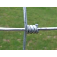 Hot Dipped Galvanized Fixed Knot Steel Wire Mesh Farm Fence