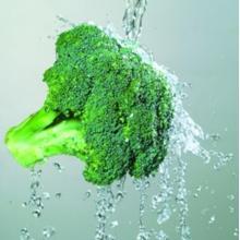 Extrato de brócolis contendo rico ácido ascórbico