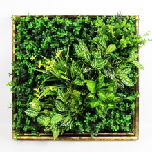 New design low cost art 3D plant green hedge wall for decoration