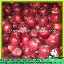 huaniu apple fruit from origin