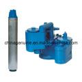 Zcheng alta presión de la bomba sumergible Zcsp-250L