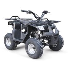 EPA 110CC ATV QUAD BIKE