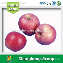 [HOT] Fresh Red Star Apple from China