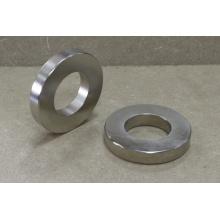Imán de anillo permanente de tierra rara con recubrimiento de níquel