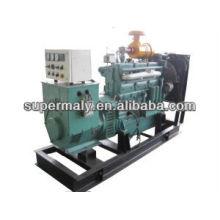 Controlador woodward chino generador de biogás