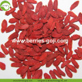 Compradores al por mayor Nature Low Pesticide Goji Berries
