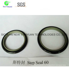 OEM Kfm / PTFE Step Seal для компрессора CNG
