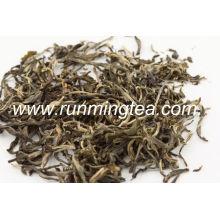 Sacs de thé vert au jasmin