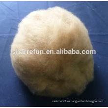 Ферма поставляем оптом из верблюжьей шерсти натуральный коричневый 17.5-18.0 микрофон /32-34мм