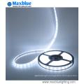 DC24V 60/72/84/96LEDs Per Meter 4-in-1 5050SMD RGBW LED Strip