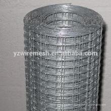 Electro galvanisé en treillis métallique / soudé wiremesh factory