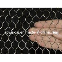 Galvanized Chicken Wire (Direct Factory Price)