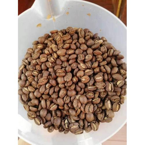 Grains de café Arabica Type Grade A