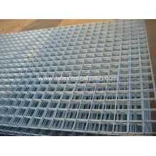 Welded Wire Mesh Panel for Fence