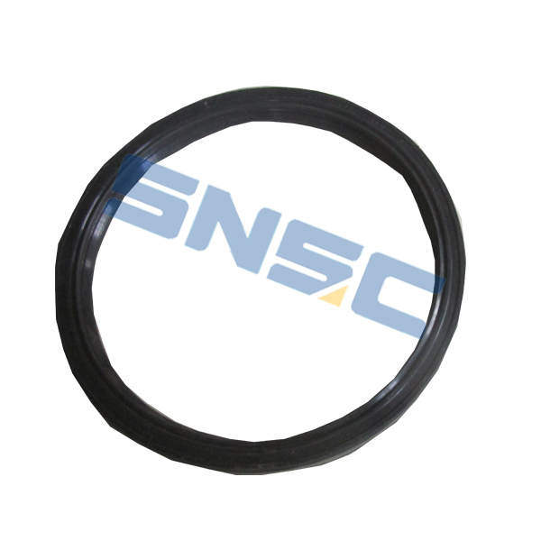 Front Wheel Oil Seal Assembly 3001114 1