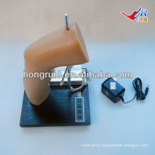 ISO Deluxe Elbow Intra-articular Injection Training Model, elbow joint injection model