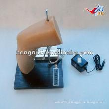 Modelo de treinamento de injeção intra-articular do cotovelo Deluxe Deluxe, modelo de injeção da articulação do cotovelo
