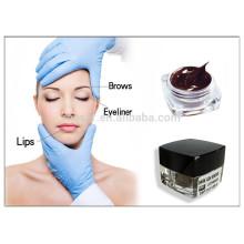 Encre de tatouage populaire pour les lèvres des sourcils, le meilleur pigment de maquillage permanent