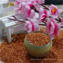 Der Export des natürlichen Wachstums Eine Tonne rote Hirsesamen-Vollkornhirse vom Porzellan