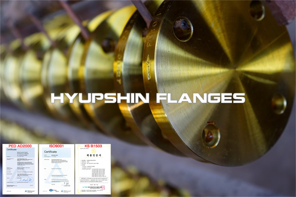 Hyupshin Flanges Blind