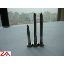 ss316/304 hex head wood screw