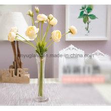 Jarrones de cristal alto; Vases claros del cilindro