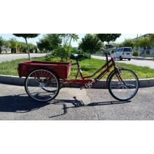 Movilidad hermosa Trike de la rueda de la movilidad (FP-TRCY044)