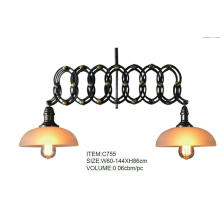 High Quality Industrial Decorative Hanging Pendant Light (C755)