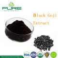 Extracto de fruta natural Wolfberry negro