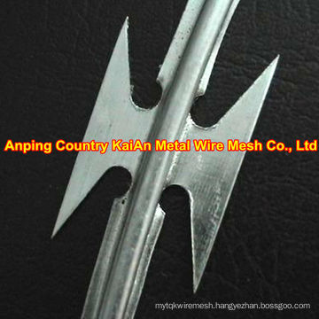 Hot Dipped Galvanized Razor Wire for shield ---- 30 years factory