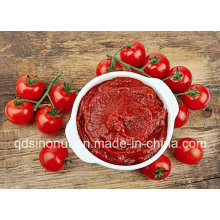 800g 22-24% Tomato Paste for MID East Market