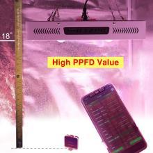 Le meilleur COB LED élèvent le double commutateur léger
