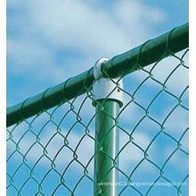 PVC Coated Chain Link Wire Mesh (HOT)